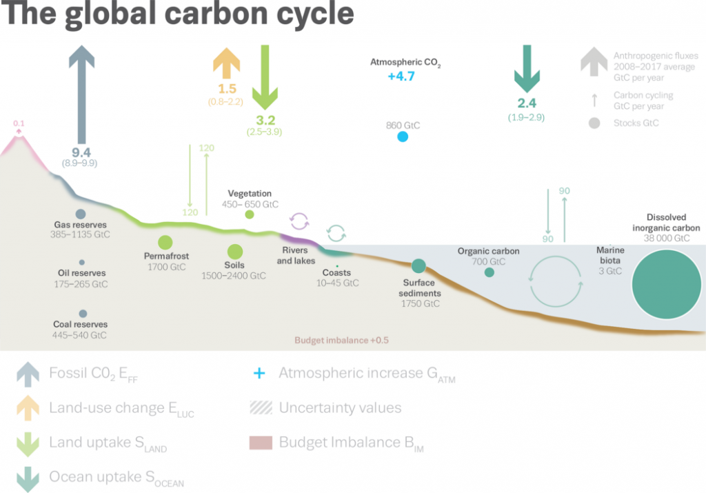 Carbon Sinks: Diagram of CO2 moving between the Earth and the atmosphere