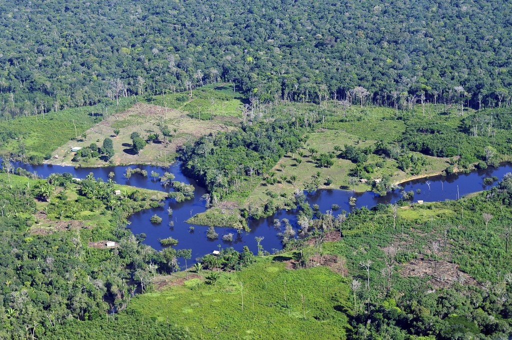 A possible climate tipping point: Deforestation in the Amazon Rainforest