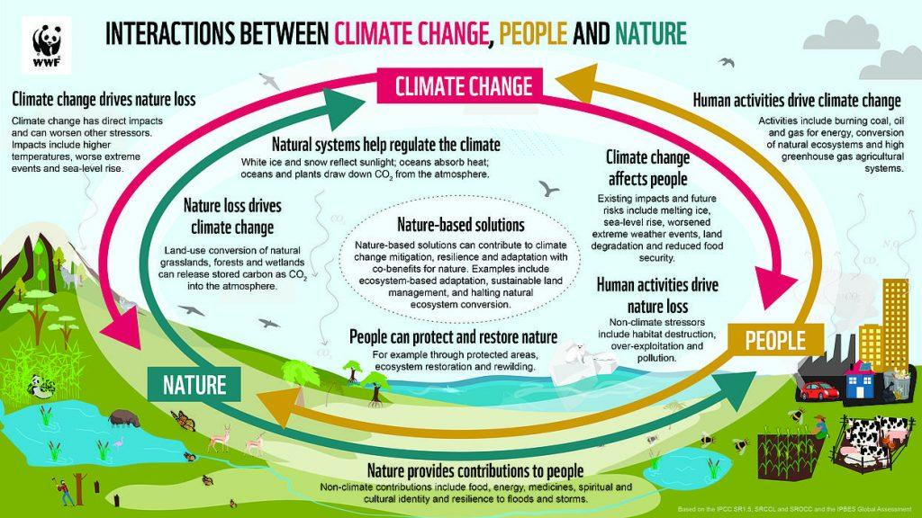 WWF Graphic illustrating the relationship between humans, nature, and climate change