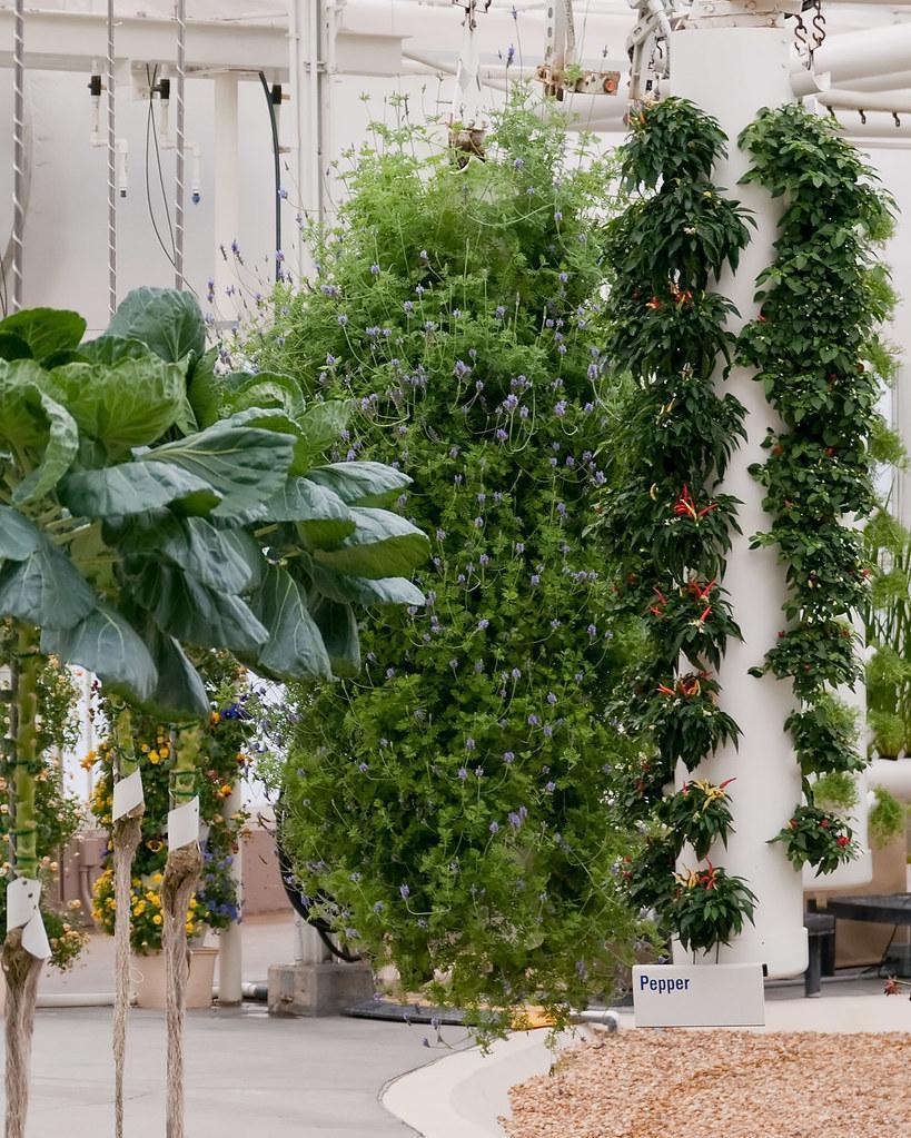 Aeroponics system of a vertical farm