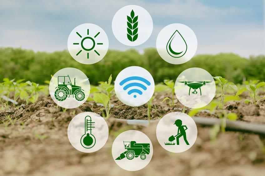 Smart agriculture, satellite imaging, remote sensing, productivity