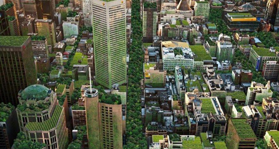 Sustainable cities are in touch with nature.