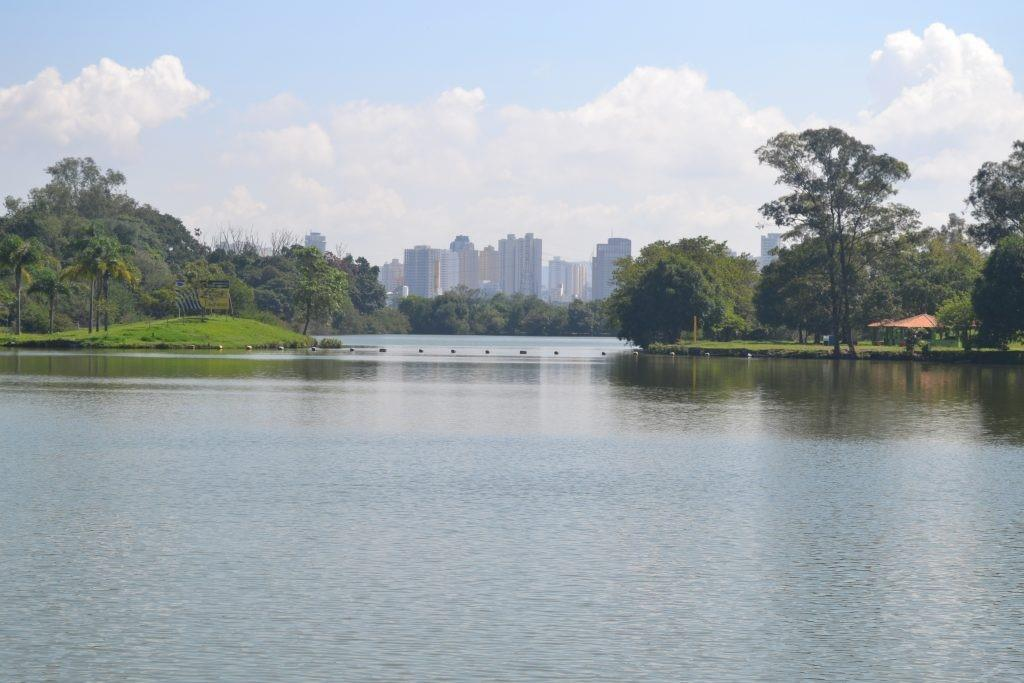 Recovered wetlands help to make a sustainable city.