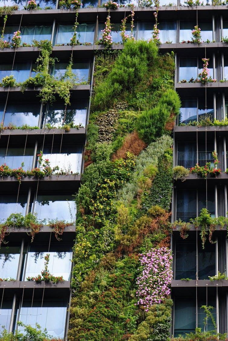 Green walls help to make a city beautiful and sustainable.