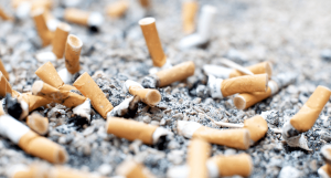 Discarded cigarette butts THRIVE